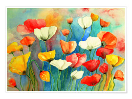 Premium poster  Colorful poppies - siegfried2838