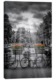 Canvas print  Typical Amsterdam II - Melanie Viola