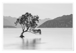 Sebastian Warneke - Lone Tree / black & white