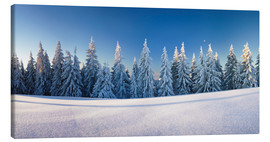 Canvas  Black Forest Winter Landscape - Markus Lange