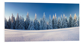Foam board print  Black Forest Winter Landscape - Markus Lange