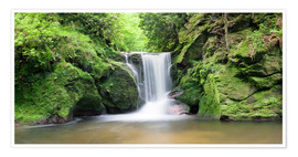 Premium poster Black Forest Waterfall