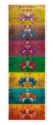 Premium poster System of Chakras Contrastive View Yoga Poster