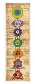 Poster  Elements of chakras yoga poster - Sharma Satyakam