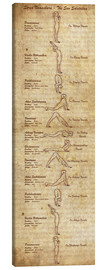 Canvas  Surya Namaskara The Sun Salutation(vertical) Yoga Poster - Sharma Satyakam