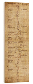 Wood print  Surya Namaskara the sun salutation(vertical) yoga poster - Sharma Satyakam
