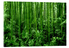 Acrylic print  bamboo forest - GUGIGEI
