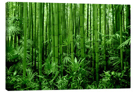 Canvas  bamboo forest - GUGIGEI