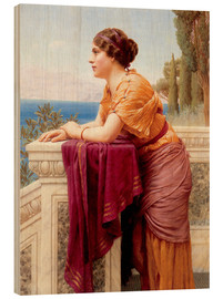 Wood  The Belvedere - John William Godward