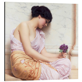 Aluminium print  Violets, sweet violets - John William Godward