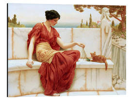 Aluminium print  The Favourite - John William Godward