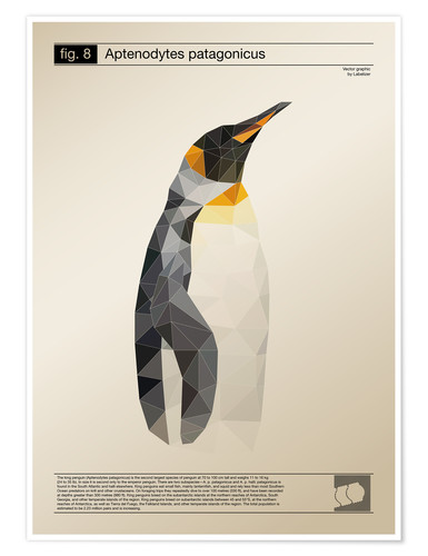 Premium poster fig8 Polygonpinguin Poster