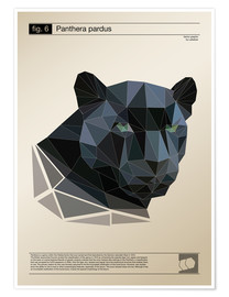 Premium poster  fig6 Polygonpanther Poster - Labelizer