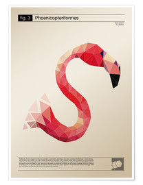 Premium poster fig3 Polygonflamingo Poster