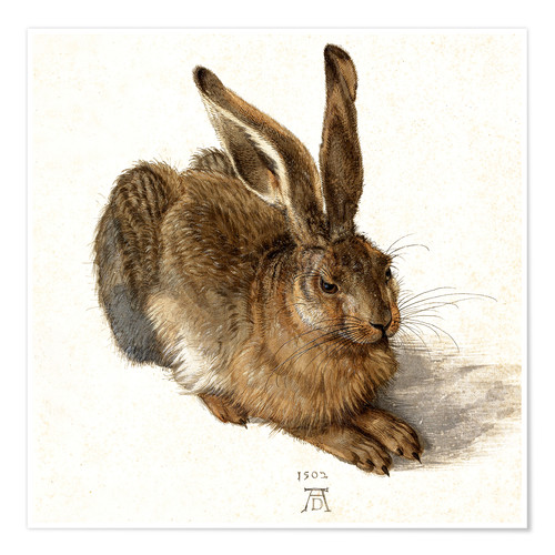 Poster Hare