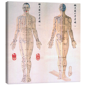Canvas  Acupuncture Map of the male body