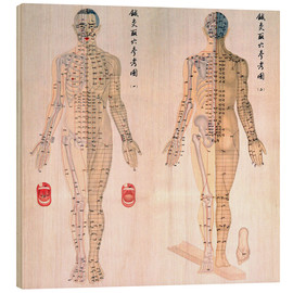 Wood  Acupuncture Map of the male body