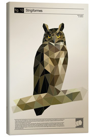 Canvas print  fig10 Polygonowl - Labelizer