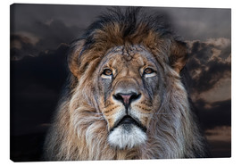 Canvas print  face to face with a king - Joachim G. Pinkawa