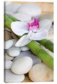 Canvas  Bamboo and orchid II - Andrea Haase Foto