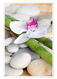 Poster  Bamboo and orchid II - Andrea Haase Foto