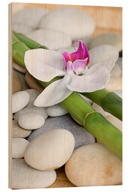 Wood  Bamboo and orchid II - Andrea Haase Foto