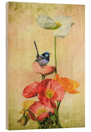 Wood print  Californian Poppies - Selina Morgan