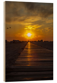 Wood  Evening sun in St Peter Ording on the North Sea - Dennis Stracke