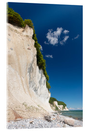 Acrylic print  Chalk Cliffs in the National Park Jasmund on Ruegen - Markus Ulrich