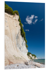 Foam board print  Chalk Cliffs in the National Park Jasmund on Ruegen - Markus Ulrich