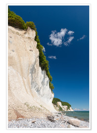 Poster  Chalk Cliffs in the National Park Jasmund on Ruegen - Markus Ulrich
