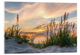Acrylic print  Beach of the Baltic Sea at Sunset - Markus Ulrich