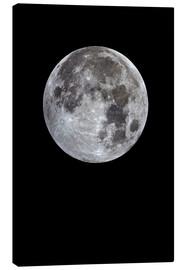 Canvas print  Full moon - MonarchC