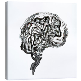 Canvas print  Superbrain - diuno