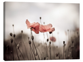 Canvas  Poppies 03 - Nailia Schwarz