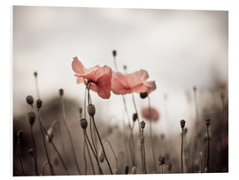 Forex  Poppies 03 - Nailia Schwarz