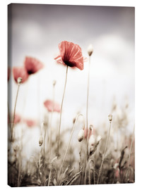 Canvas print  Red Poppy Flowers - Nailia Schwarz