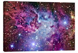 Canvas  The Fox Fur Nebula - R Jay GaBany