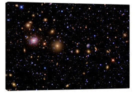 Canvas print  The Perseus Galaxy Cluster - R Jay GaBany