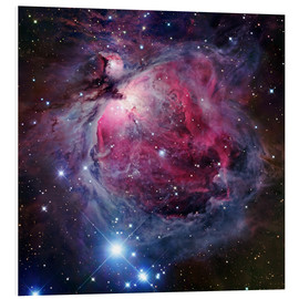 Robert Gendler - The Orion Nebula
