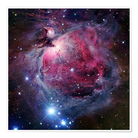 Premium poster  The Orion Nebula - Robert Gendler