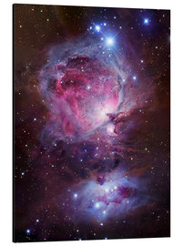 Aluminium print  The Orion Nebula - Robert Gendler