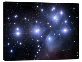 Canvas print  The Pleiades - Robert Gendler