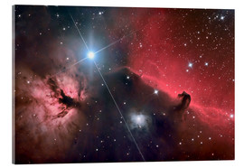 Acrylic glass  The Horsehead Nebula - Roth Ritter