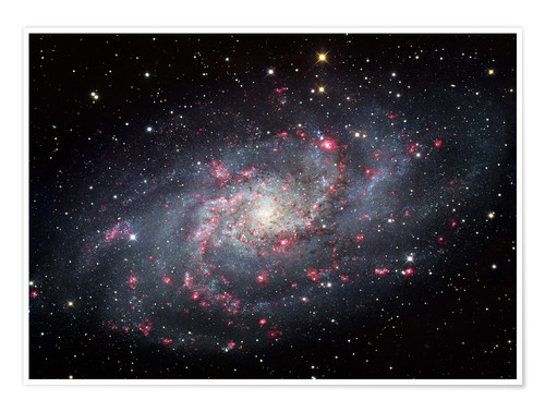 Premium poster The Triangulum Galaxy