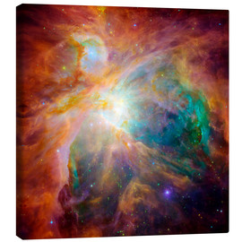 Canvas print  The Orion Nebula