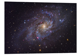 Forex  The Triangulum Galaxy - Roth Ritter