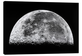 Canvas print  The moon - Stocktrek Images