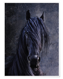 Premium poster The Friesian