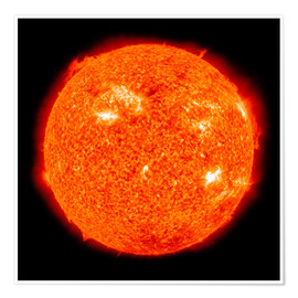 Premium poster Solar activity on the Sun